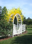 Dale Chihuly Arch