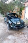 Sayulita Bug